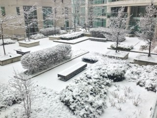 Courtyard on a winter's day